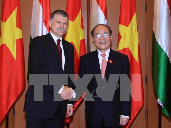 Entretien entre les presidents des AN vietnamienne et hongroise hinh anh 1