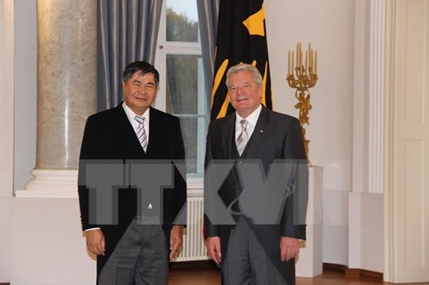 Le president allemand est satisfait du developpement des relations avec le Vietnam hinh anh 1