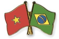 Vietnam-Bresil: de nombreux potentiels de cooperation dans la defense hinh anh 1