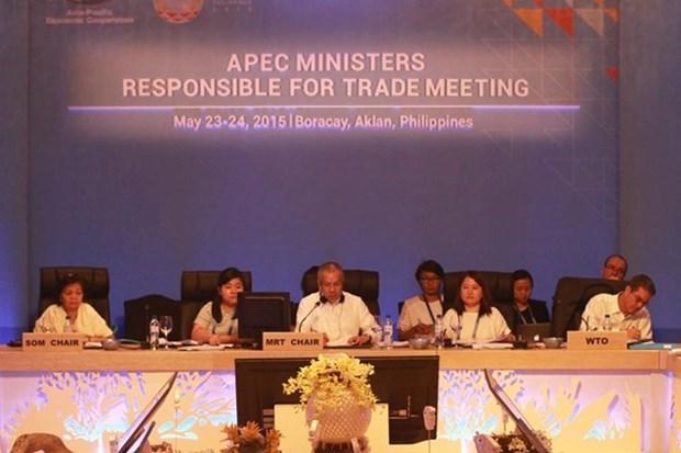 Conference ministerielle de l'APEC aux Philippines hinh anh 1