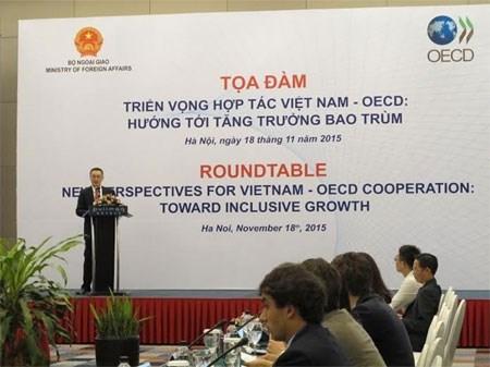 La cooperation Vietnam-OECD s'oriente vers un developpement inclusif hinh anh 1