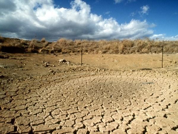 Le Vietnam conjugue les efforts communs pour faire face aux changements climatiques hinh anh 1