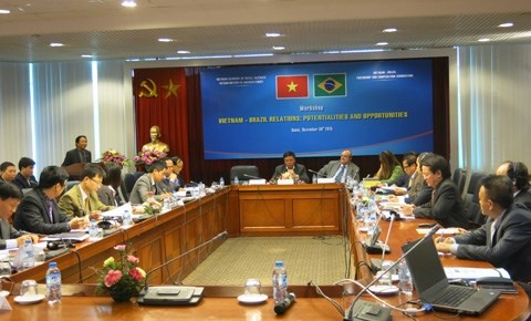 Vietnam - Bresil : Potentiels et opportunites de partenariat hinh anh 1