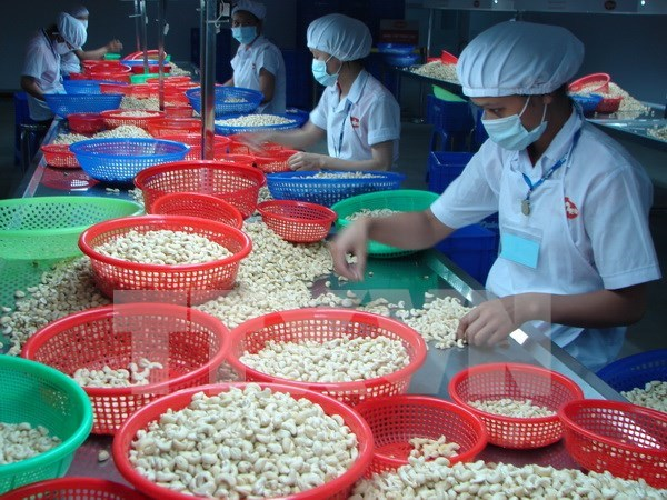La Communaute economique de l'ASEAN promeut la cooperation economique regionale hinh anh 2