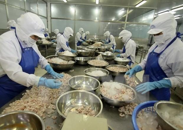 Record des exportations vietnamiennes vers le Mexique hinh anh 1