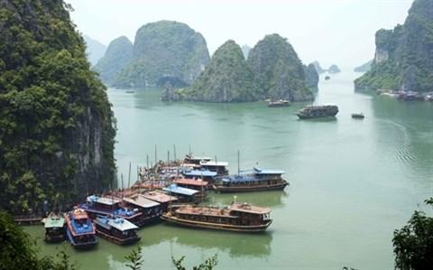 Operation de seduction du Vietnam aupres des touristes russes hinh anh 1