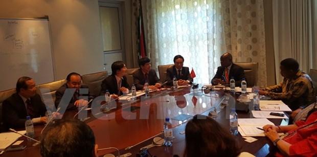 Renforcement de la cooperation entre les AN vietnamienne et sud-africaine hinh anh 1