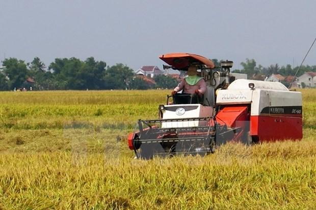 Developpement de la chaine de valeur agricole de la sub-region du Mekong hinh anh 1