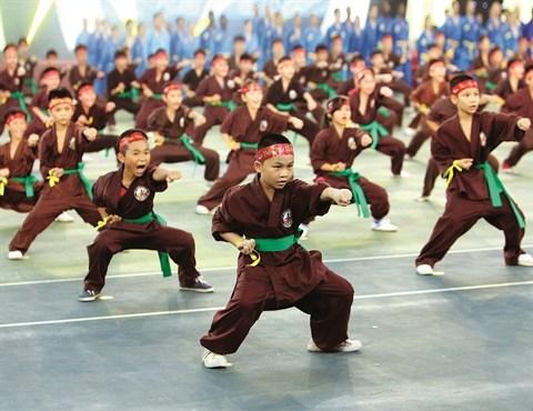 Les arts martiaux traditionnels, joyau de la culture vietnamienne hinh anh 1