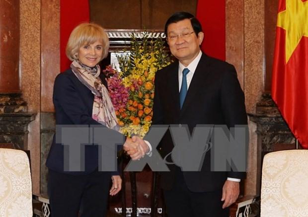 Truong Tan Sang recoit la presidente de la Commission des affaires etrangeres de l'AN francaise hinh anh 1
