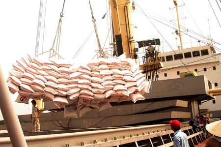 Le Vietnam promeut l'export de riz sur le marche hongkongais hinh anh 1