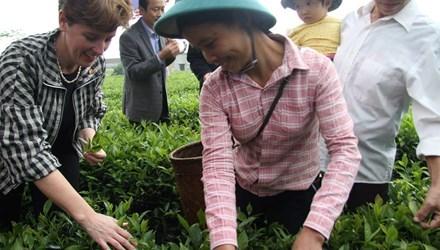 Assistance canadienne de plus de 18 millions de dollars pour les agriculteurs vietnamiens hinh anh 1