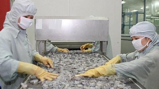 Reprise des exportations de crevettes vers la Chine hinh anh 1