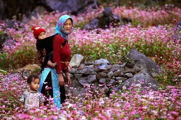Les sites touristiques a ne pas manquer a Ha Giang hinh anh 9