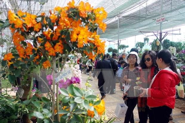 Cloture des 6e Floralies de Da Lat hinh anh 1