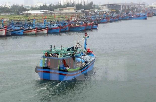 Quang Ngai : postes de radiocommunication en mer pour pecheurs hinh anh 1