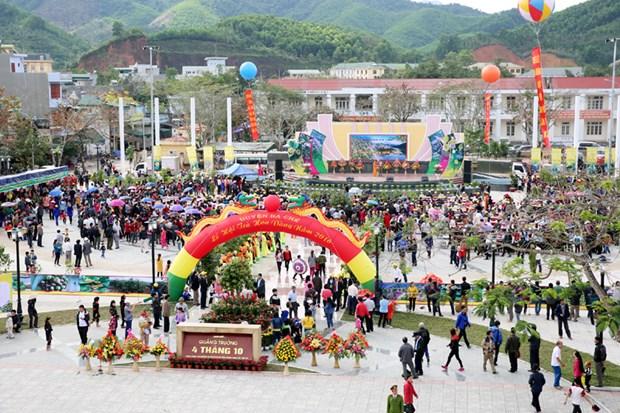 Quang Ninh: ouverture du festival du camelia a fleurs d'or hinh anh 1