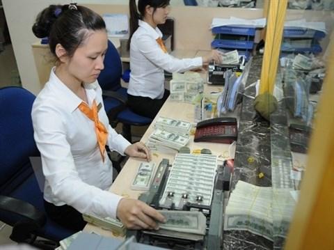 Les besoins en devises des entreprises sont assures hinh anh 1