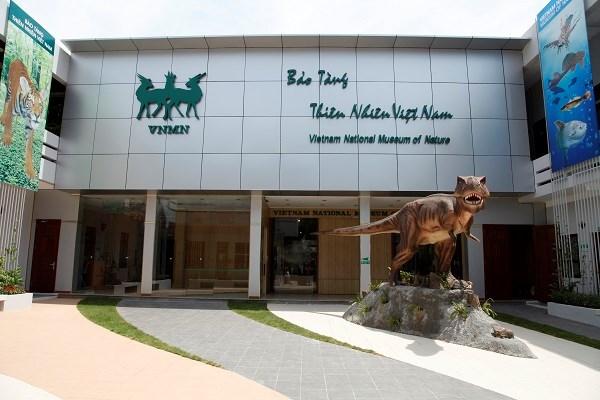 La legendaire tortue geante de Hoan Kiem s'en est allee hinh anh 2