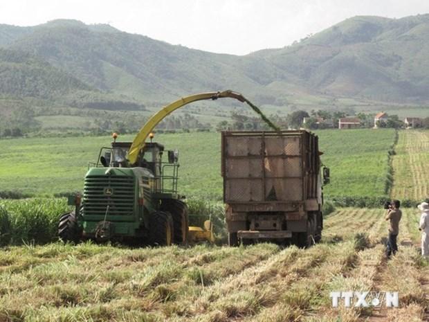 Le 12e Congres du Parti : le developpement agricole associe a l'edification d'une Nouvelle ruralite hinh anh 2