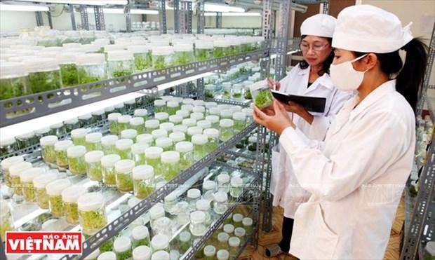 Developper les sciences et technologies, politique nationale de premier rang hinh anh 2