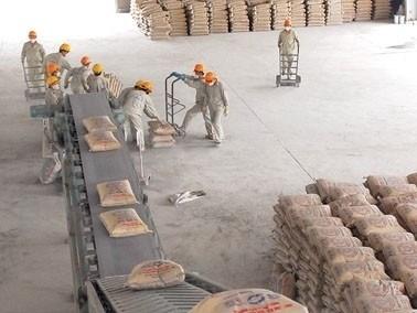 Le SCG renforce son investissement au Vietnam hinh anh 1