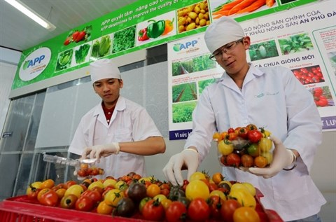Nouveaux produits agricoles pour le Tet traditionnel 2016 hinh anh 1