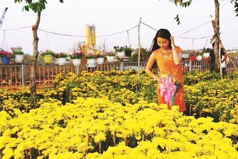 Cai Mon ou l'ame de la floriculture du delta du Mekong hinh anh 1