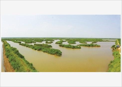 Voyager autrement au Parc national de Xuan Thuy hinh anh 3