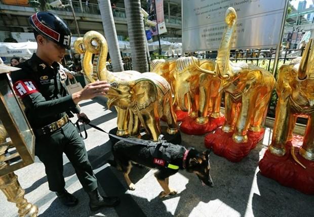 La police thailandaise en etat d'alerte apres des menaces terroristes hinh anh 1