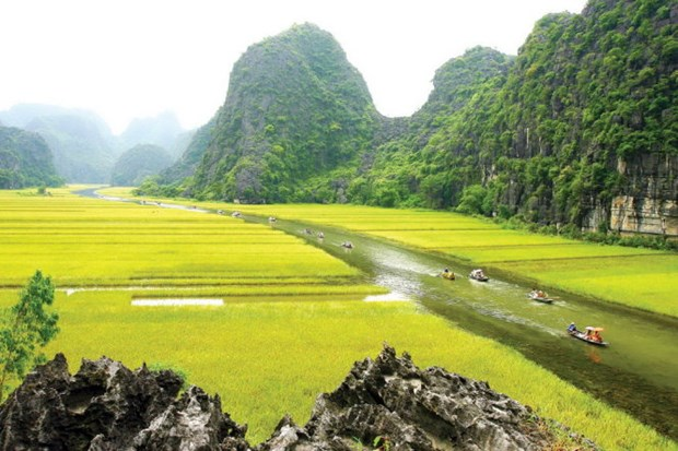 Le tournage du film americain Kong : Skull Island est a Ninh Binh hinh anh 1