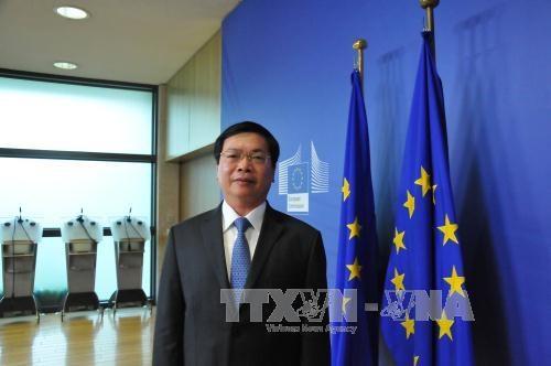 L'ALE entre le Vietnam et l'UE en vigueur en 2018 ? hinh anh 1