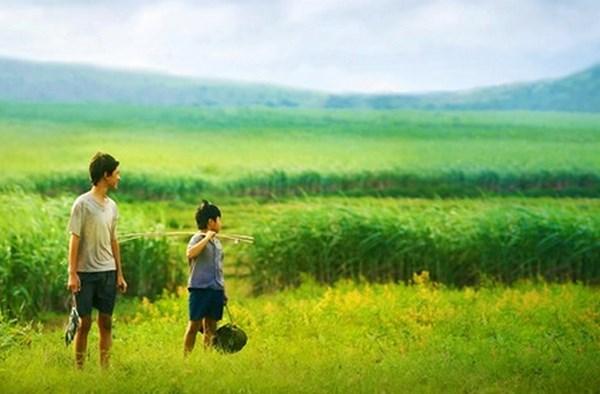 Un festival du film francophone au Vietnam hinh anh 1