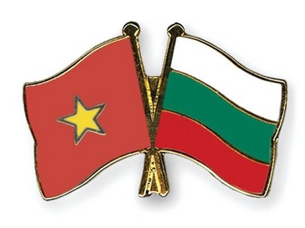 Celebration de la fete nationale de la Bulgarie hinh anh 1