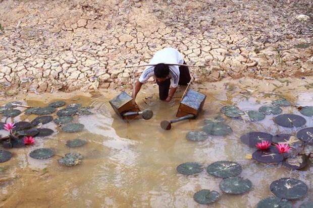 L'adaptation au changement climatique, une urgence pour le delta du Mekong hinh anh 2