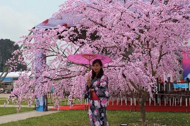 Hanoi lance des activites d'echanges culturels avec le Japon hinh anh 1