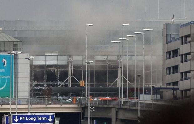 Attentats de Bruxelles : aucun Vietnamien parmi les victimes hinh anh 1