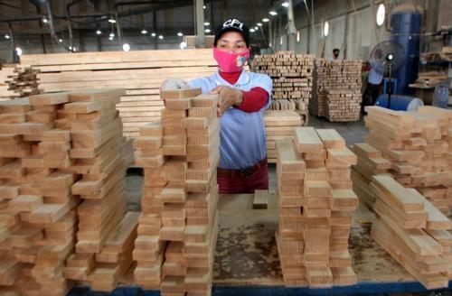 Les exportations de bois en croissance de 3,4 % hinh anh 1