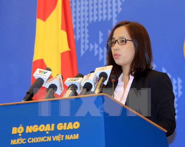 A propos de la protection des citoyens vietnamiens a l'etranger hinh anh 1