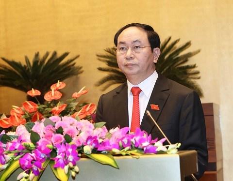 Le chef de l'Etat Tran Dai Quang se rend a Ninh Binh hinh anh 1