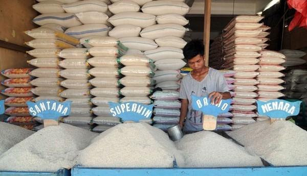 L'Indonesie exportera 100.000 tonnes de riz vers dix pays asiatiques et europeens hinh anh 1
