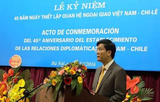 Celebration du 45e anniversaire des relations diplomatiques Vietnam-Chili hinh anh 1