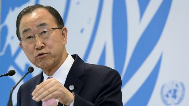 L'Indonesie renforce son role au sein de l'ONU hinh anh 1