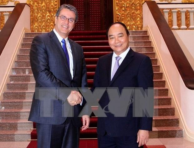 Le Premier ministre recoit le directeur general de l'OMC hinh anh 1