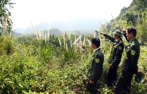 Des solutions pour mieux proteger les parcs nationaux et reserves naturelles hinh anh 2