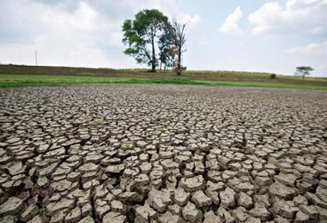 Des mesures efficaces pour faire face aux changements climatiques hinh anh 1