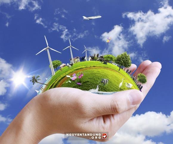 Le gouvernement adopte un projet sur le changement climatique et la croissance verte hinh anh 1