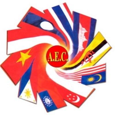 L'ASEAN face aux defis de croissance et de developpement hinh anh 1