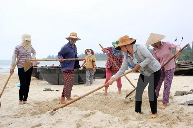 Hecatombe de poissons : un vice-PM se rend a Quang Tri et Quang Binh hinh anh 1