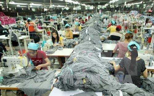 Pour que Hanoi profite pleinement des avantages du TPP hinh anh 1